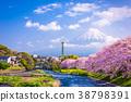 Mt. Fuji in Spring 38798391