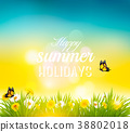 Happy summer holidays background with flowers 38802018