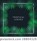 Green palm tree leaf and text on black background. 38804326