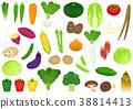 蔬菜設置02 38814413