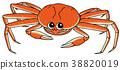 海蟹蟹 38820019