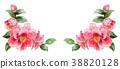 花朵 花卉 花 38820128