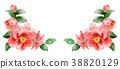 花朵 花卉 花 38820129