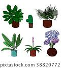 Set of flowers in pot cartoon  vector illustration 38820772