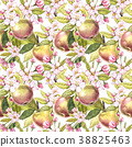 apple, agriculture, blooming 38825463