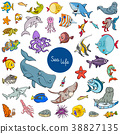 cartoon sea life animal characters set 38827135