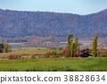 아침, 언덕, 작은 산 38828634