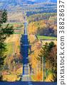 roller coaster road, landscape, scenery 38828637