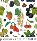 Berries color set pattern 38836838
