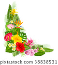 Tropical corner design 38838531