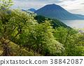 시로야시쯔쯔지 피는 社山 능선에서 볼 난타 이산과 주젠지 38842087