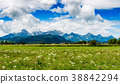 Beautiful natural landscape of the Alps. 38842294