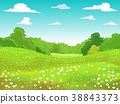 Body Of Land Meadow Illustration 38843373