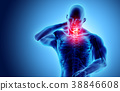 Neck painful - cervical spine, 3D illustration. 38846608