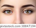 Close up view of beautiful brown female eyes 38847194