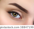 Close up view of beautiful brown female eye 38847196