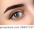 Close up view of beautiful brown female eye 38847197