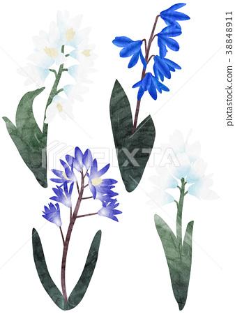 水彩畫 花朵 花 38848911