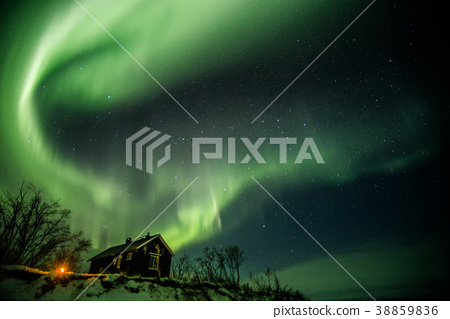 Aurora 38859836