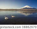 Mount Fuji with two white swans 38862670