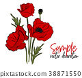 Vector red poppies flowers. Bloom symbol of spring 38871550