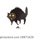 Cute fluffy fat black cat scared of little mouse 38871626
