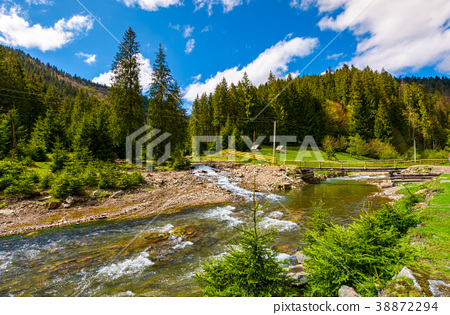 beautiful landscape with forest river in mountains 38872294