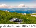 boulder, hillside, beautiful 38872320