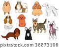 สัตว์,ภาพวาดมือ สัตว์,สุนัข 38873106