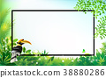 Exotic Toucan Bird, Colorful Hibiscus Flowers 38880286