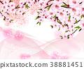 春天 春 花朵 38881451