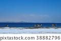 쿠 나시르 해협과 에조 사슴 16 : 9 38882796
