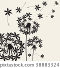 Dandelions dandelion with flying seeds on wind 38883324