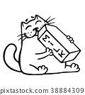 milk cat drink 38884309