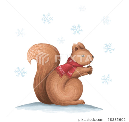 Cute squirrel eat a nut in the falling snow 38885602