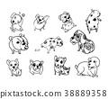 Drawing doodle set of dog 38889358