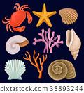 Vector set of marine elements. Red crab, starfish 38893244