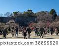 오사카 성 매화 원 38899920