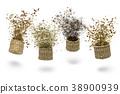 herbal blend for tea 38900939
