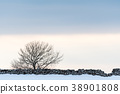 Bare tree by a stone wall 38901808