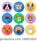 Concept of Purebred Dogs on Colored Circle Icons 38902892