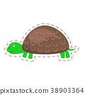 turtle wild isolated 38903364