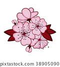 Cherry blossom flowers 38905090