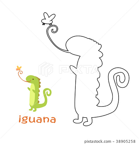 Kids Coloring Page Iguana Stock Illustration 38905258