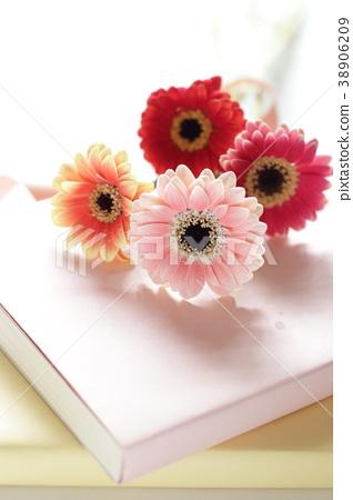 Books and Gerberas 38906209
