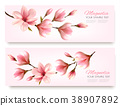 Nature spring banners with beautiful magnolia 38907892
