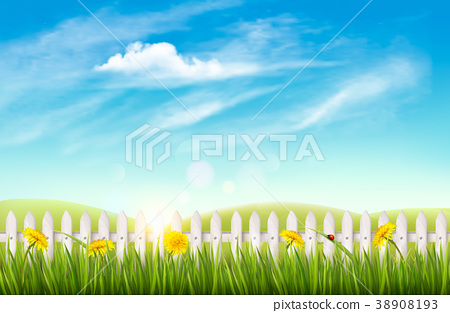 Nature background with green grass and french. 38908193