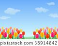 푸른 하늘, 파란 하늘, 꽃밭 38914842