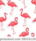bird, flamingo, pattern 38916128