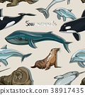 Sea mammals animal collection icons pattern 38917435